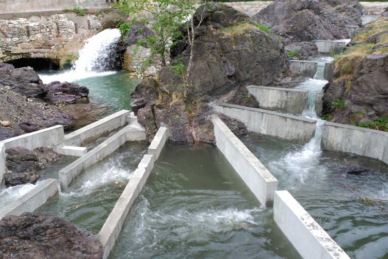 ROCASSES FISH LADDER